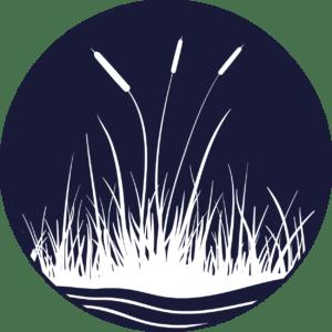 Perte et dégradation des milieux humides et riverains