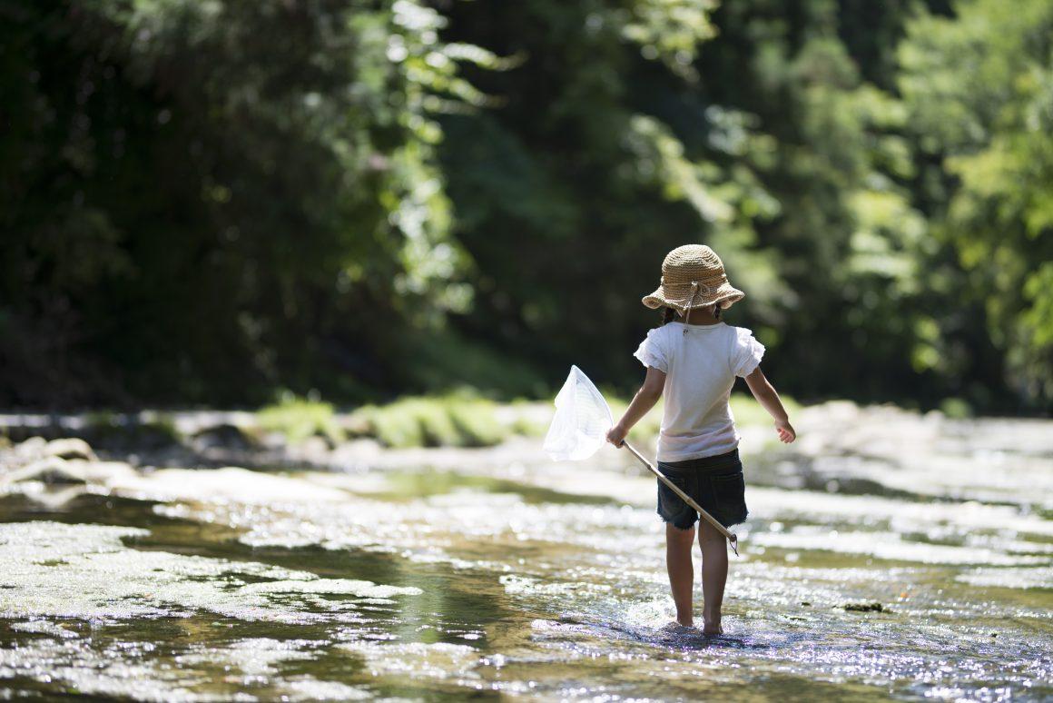 Communiqué – Juin mois de l'eau