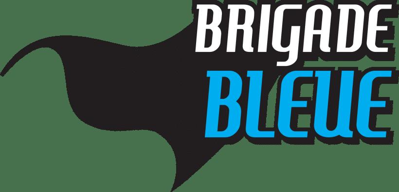 Brigade bleue